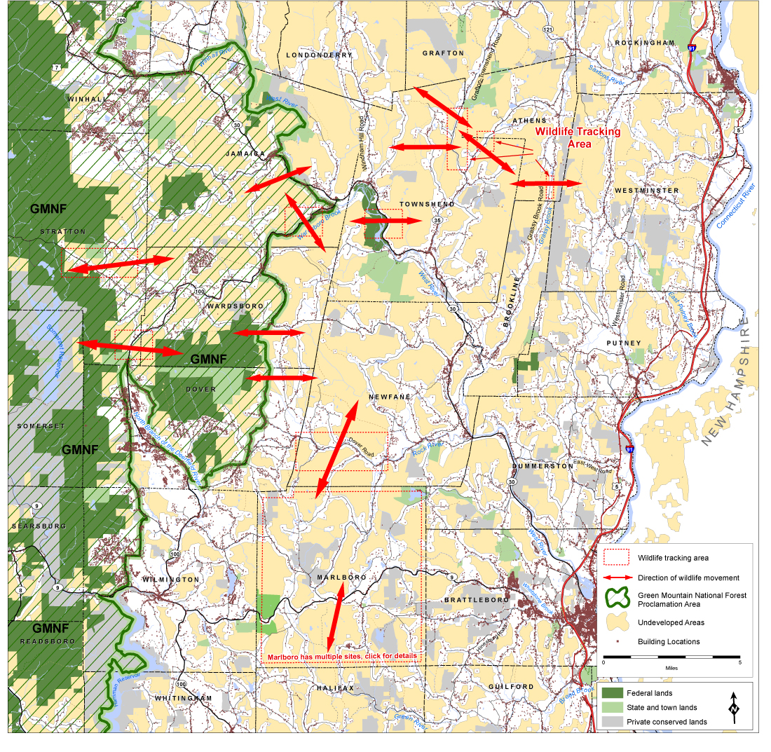 Windham County Wildlife Travel Corridors